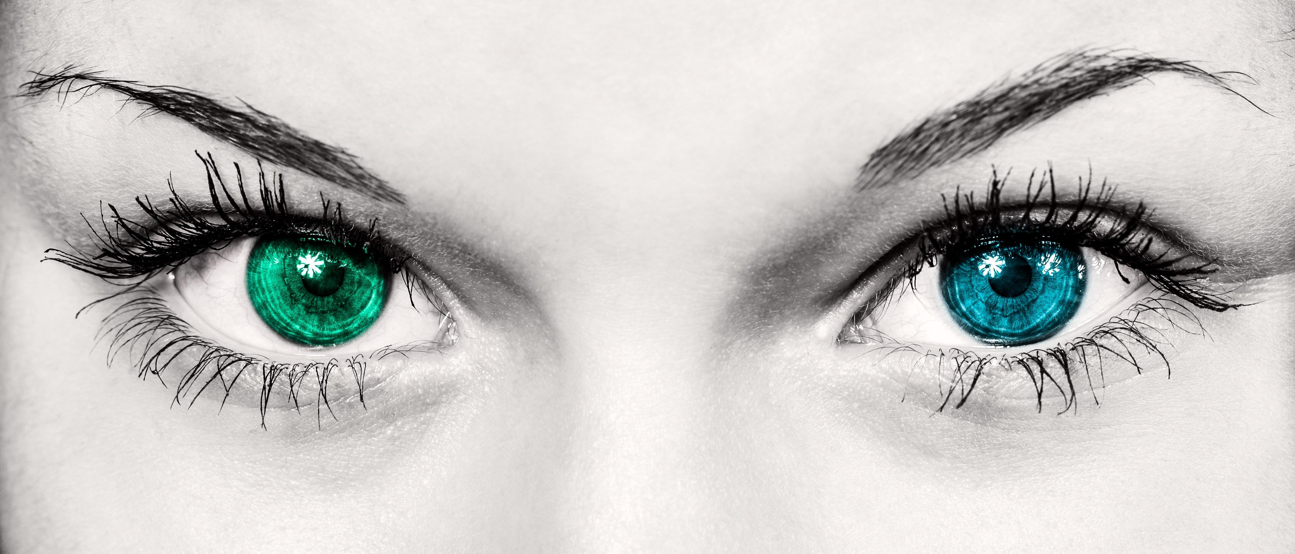 Ojos BN